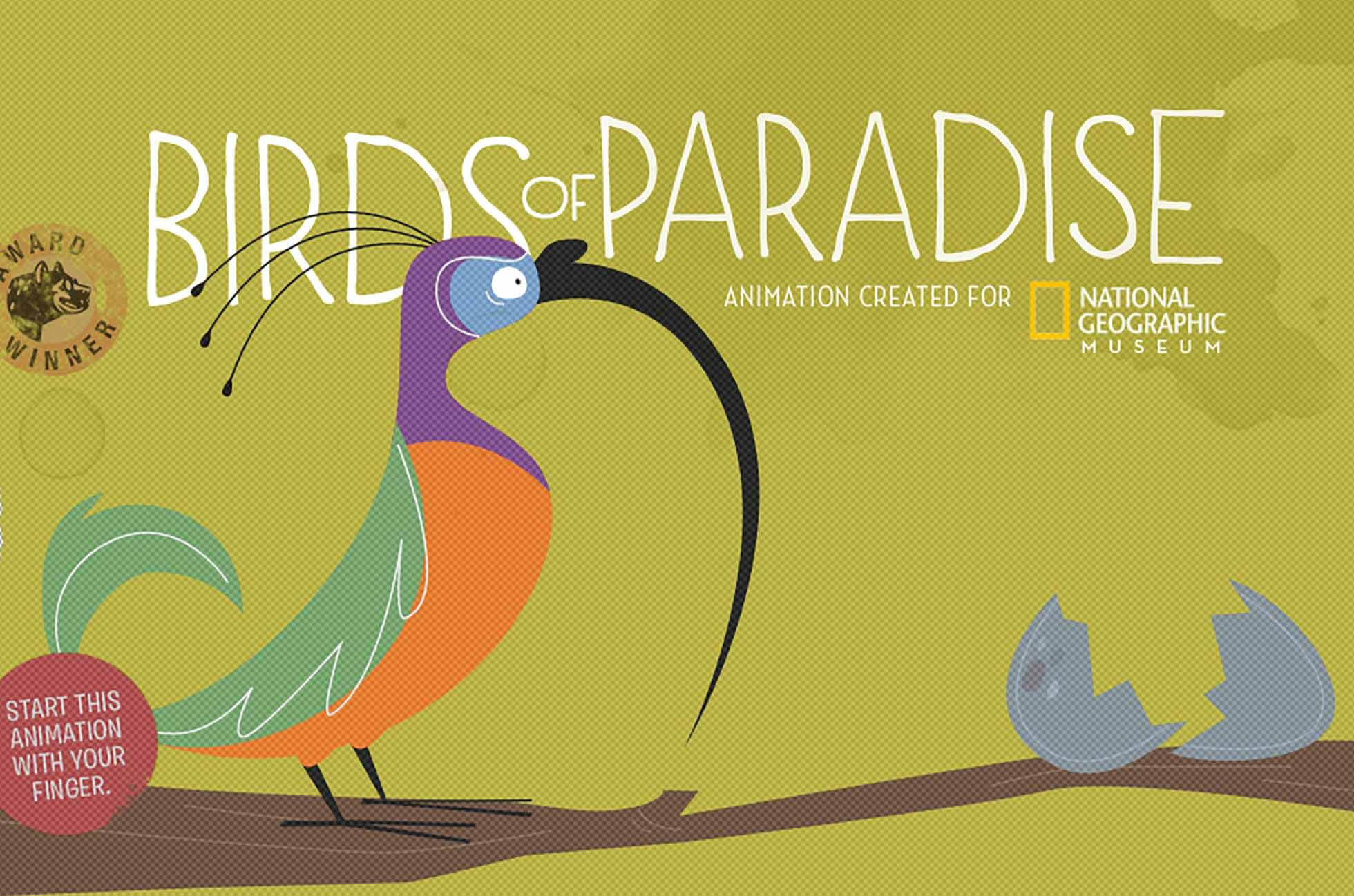 Birds of Paradise animation created for National Geographic Musuem. Start this animation with your finger.