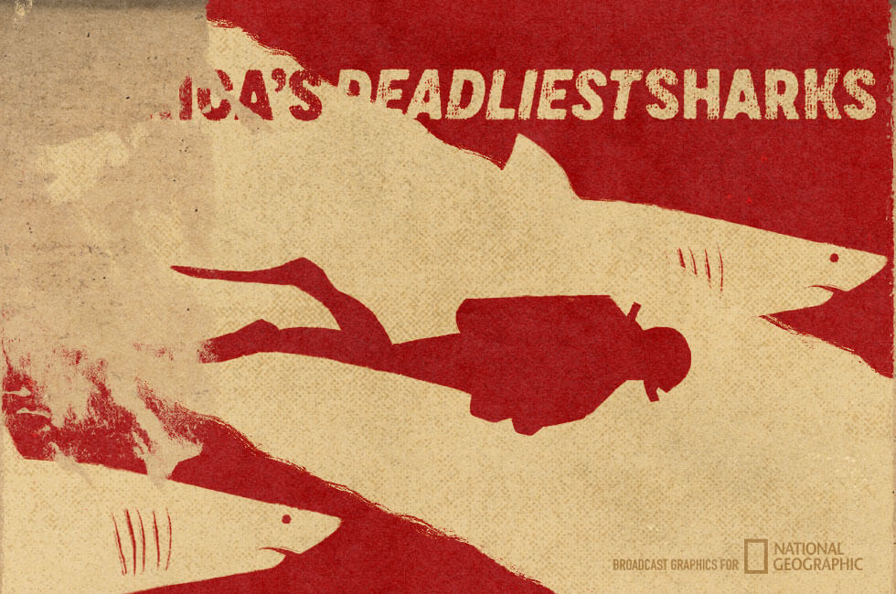 National Geographic Americas Deadliest Sharks